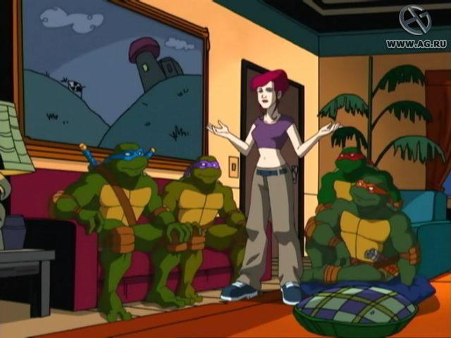 games similar to Teenage Mutant Ninja Turtles (2003)