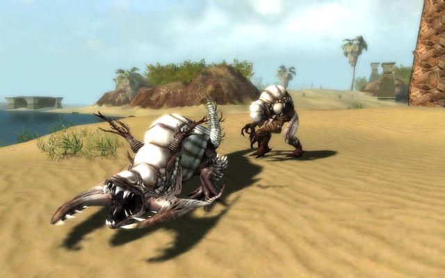 games similar to Guild Wars Nightfall