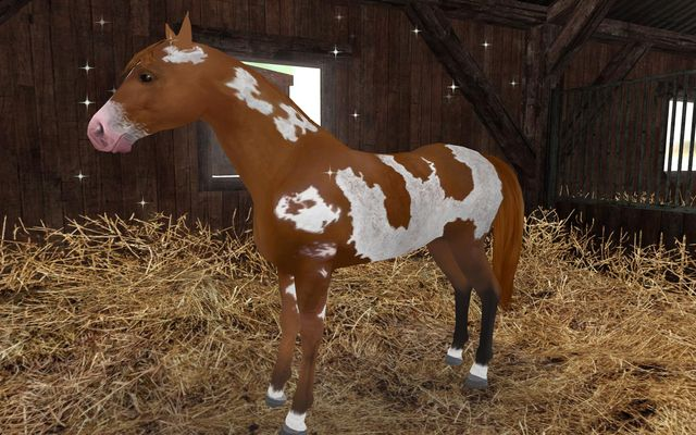 games similar to Planet Horse